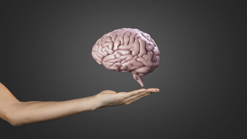 Resultado de imagen para brain hd