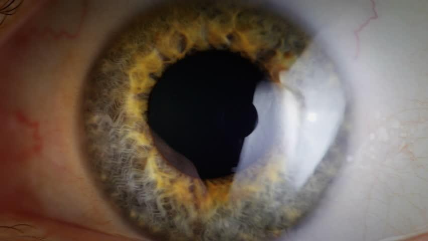 Extreme close up human eye iris in 4K UHD video. Human eye iris contracting. Extreme close up. 4K UHD 2160p footage. | Shutterstock HD Video #9215291
