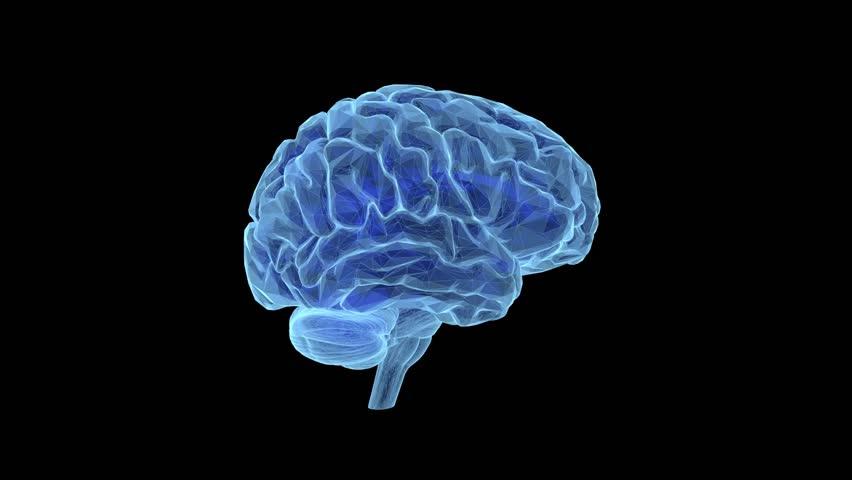 Sci Fi Brain : Brain hologram holographic projection projector sci fi