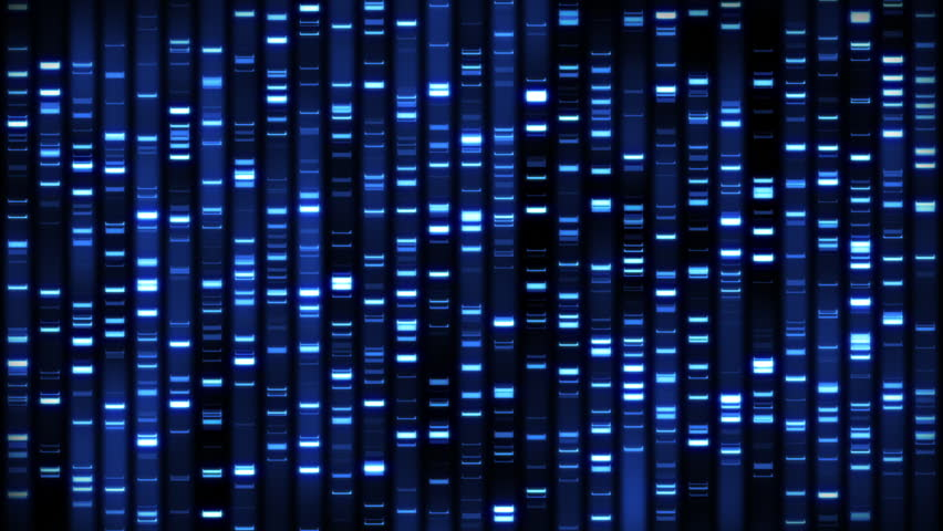 Header of sequence