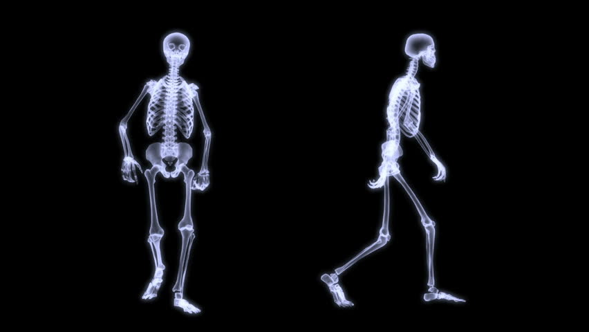 skeleton walk - seperated on green screen stock footage video, Skeleton