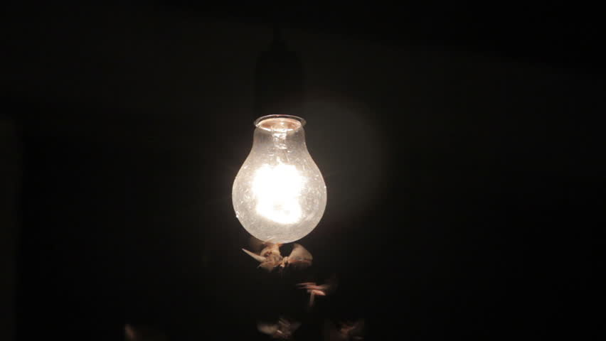 Moths To A Light Bulb. Stock Footage Video 3341153 - Shutterstock:Moths termites and insects playing bulb light at night, with lens lens  flare effect.,Lighting