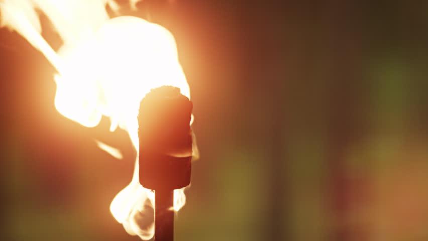 Flaming Torch | Shutterstock HD Video #9806105